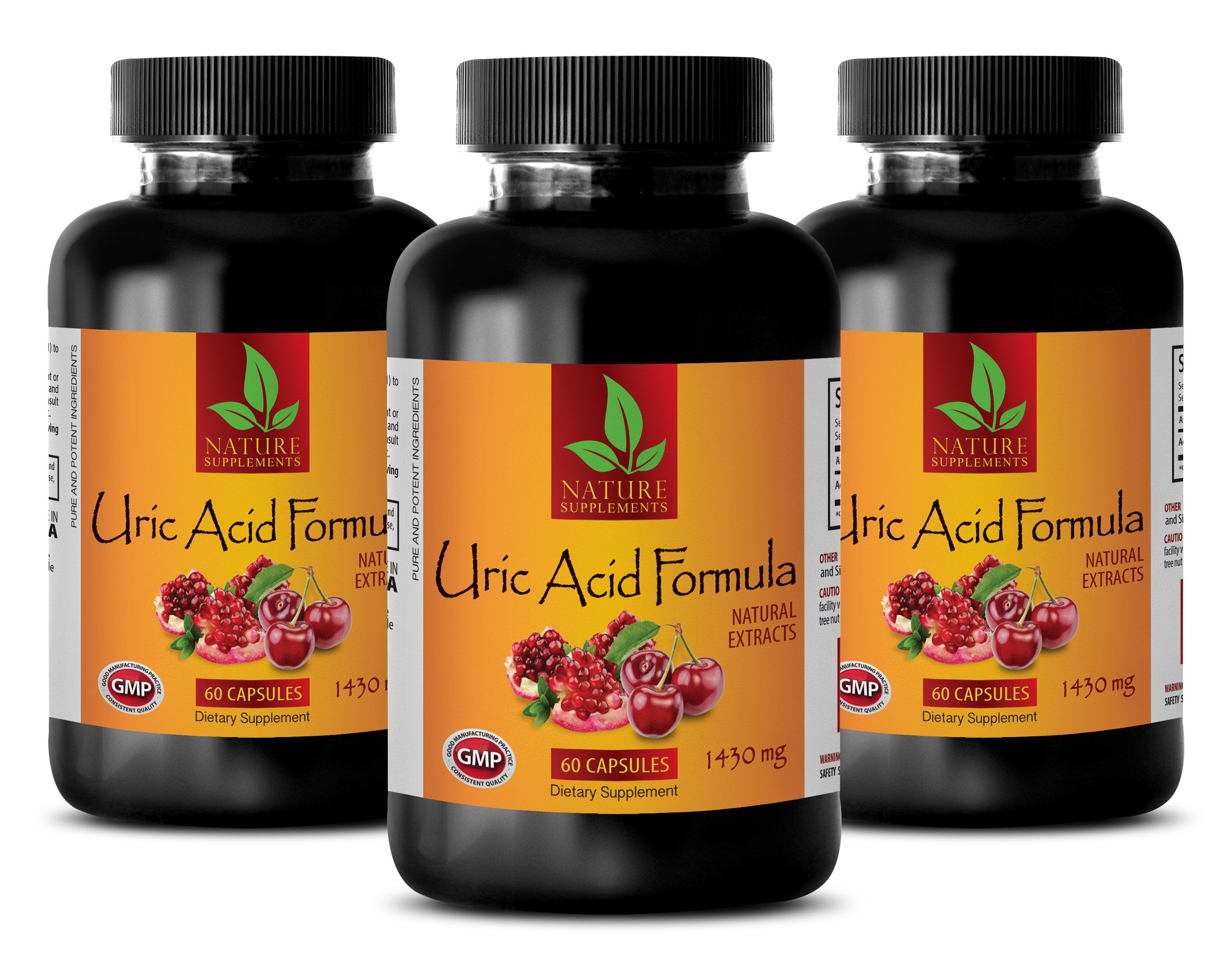 Brain Memory Pills - URIC Acid Formula - Natural EXTRACTS - Green Tea Quality - 3 Bottles (180 Capsules)