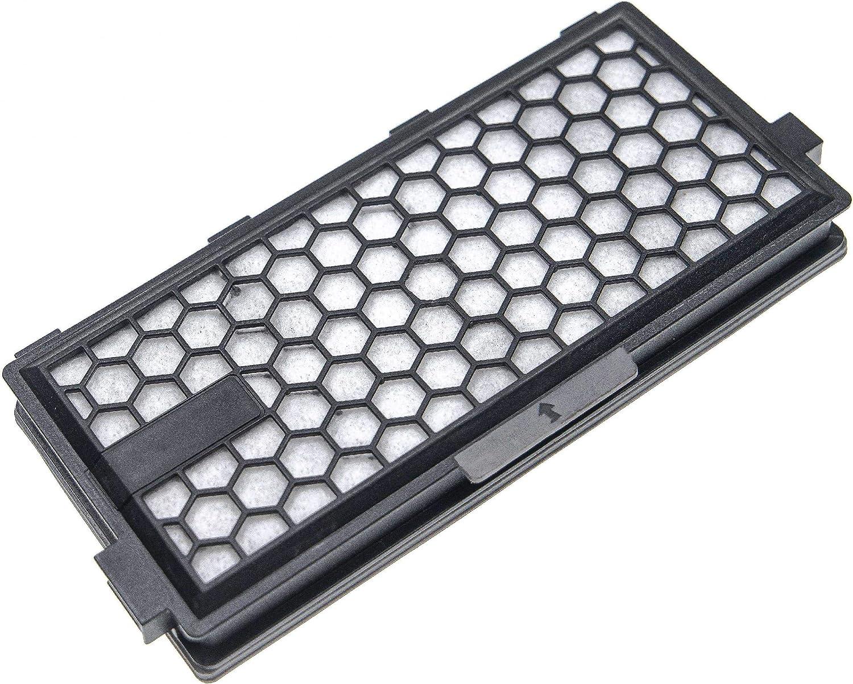 vhbw Filtro Hepa de carbón activo de recambio antialérgico para aspiradoras Miele Compact C1: Amazon.es: Hogar