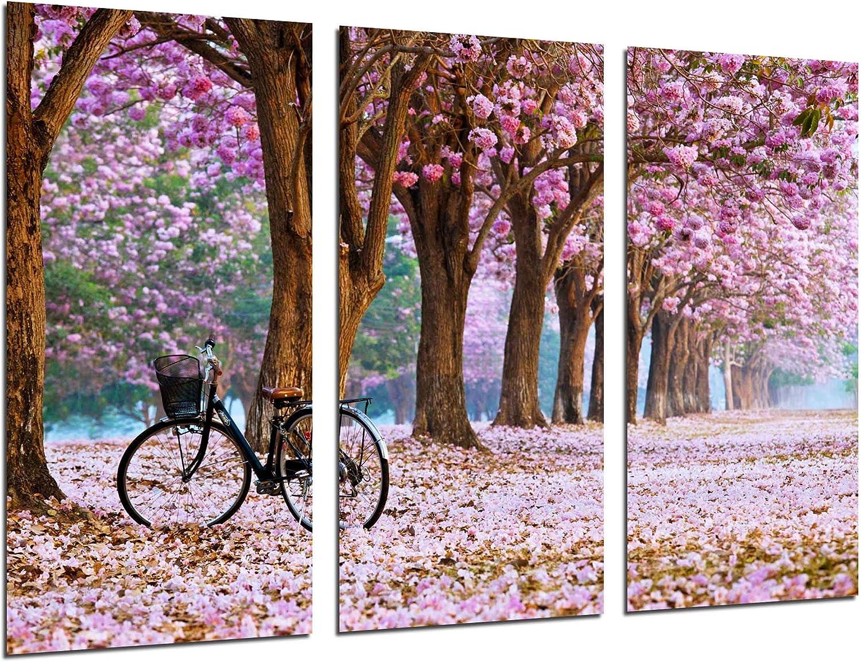 Cuadro Fotográfico Camino Bosque en Otoño, Camino de Flores Rosas Tamaño total: 97 x 62 cm XXL