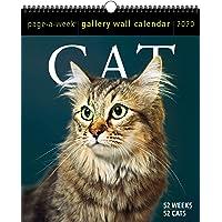 2020 Cat Page-A-Week Gallery Wall Calendar