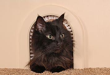 Cat Door - Cathole Interior Pet Door With Cleaning Brush & Amazon.com : Cat Door - Cathole Interior Pet Door With Cleaning ... Pezcame.Com
