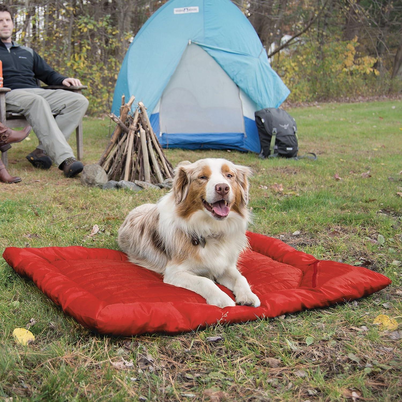 dog camping - dog camping beds
