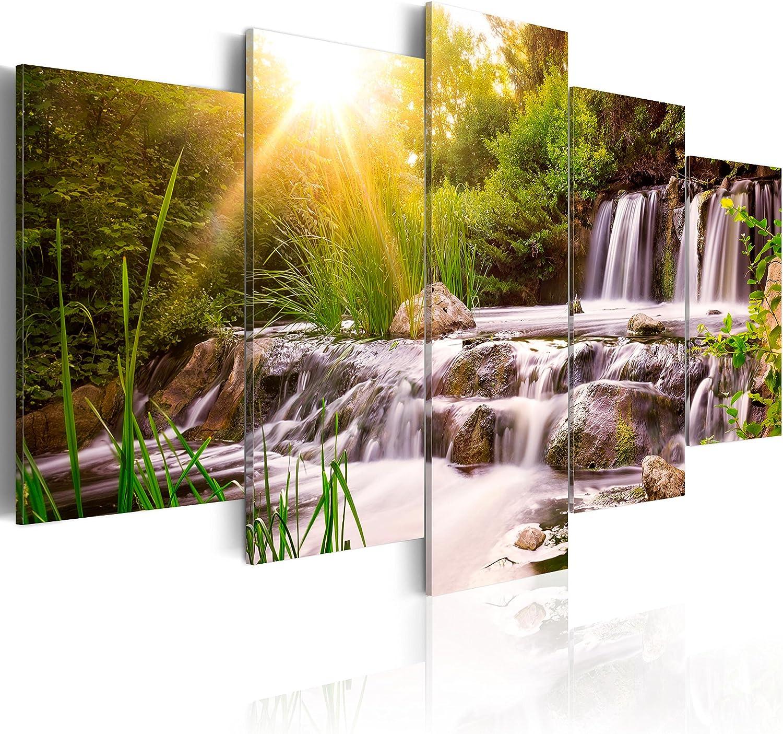 murando - Cuadro en Lienzo 200x100 cm Naturaleza Paisaje - impresión de 5 Piezas - Material Tejido no Tejido - impresión artística - Decoracion de Pared Cascada Verde Arboles c-C-0026-b-n