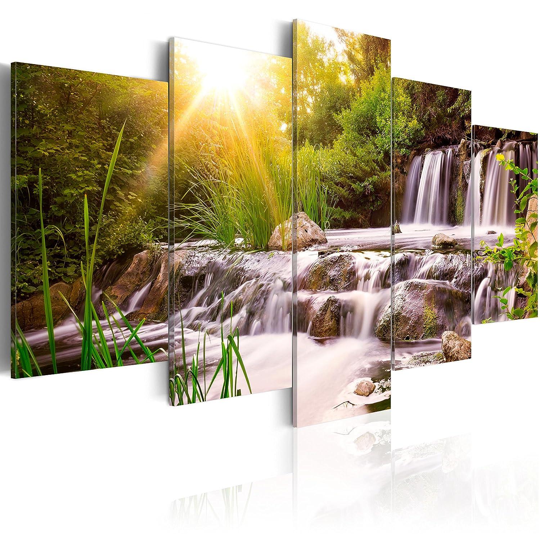murando - Acrylglasbild Natur 200x100 cm - 5 Teilig - Bilder Wandbild - modern - Decoration c-C-0026-k-n