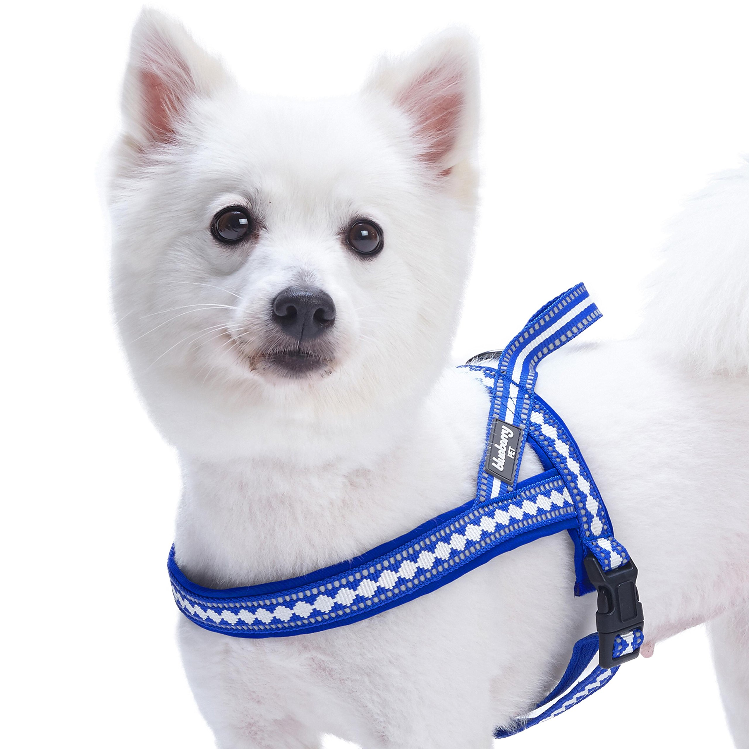 Blueberry Pet 7 Colors Soft & Comfy 3M Reflective Jacquard Padded Dog Harness, Chest Girth 25.5'' - 31.5'', Palace Blue, M/L, Adjustable Harnesses for Dogs by Blueberry Pet (Image #3)