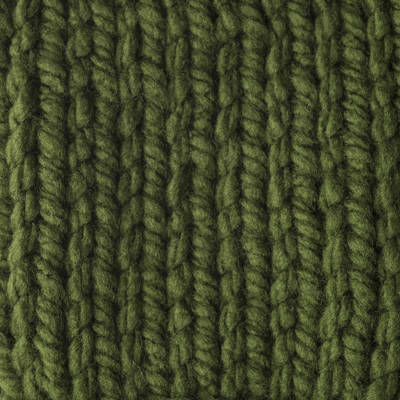 Dark Green Bernat 16112828237 Softee Chunky Yarn 1 Pack