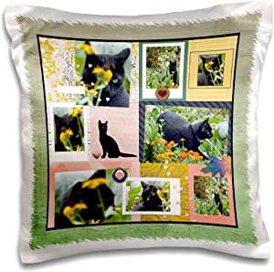3dRose Image of Black Cat in the Garden Collage, Flower and Pumpkins - Pillow Cases (pc_329211_1)