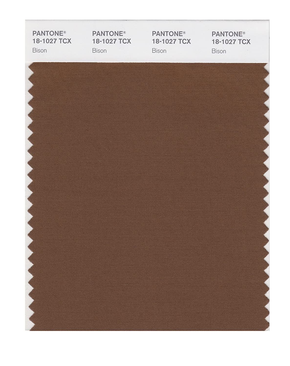 PANTONE SMART 18 1027X Color Swatch Card Bison