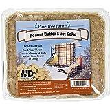 Pine Tree 1421 Peanut Butter Wild Bird Suet Cake, 3-Pound