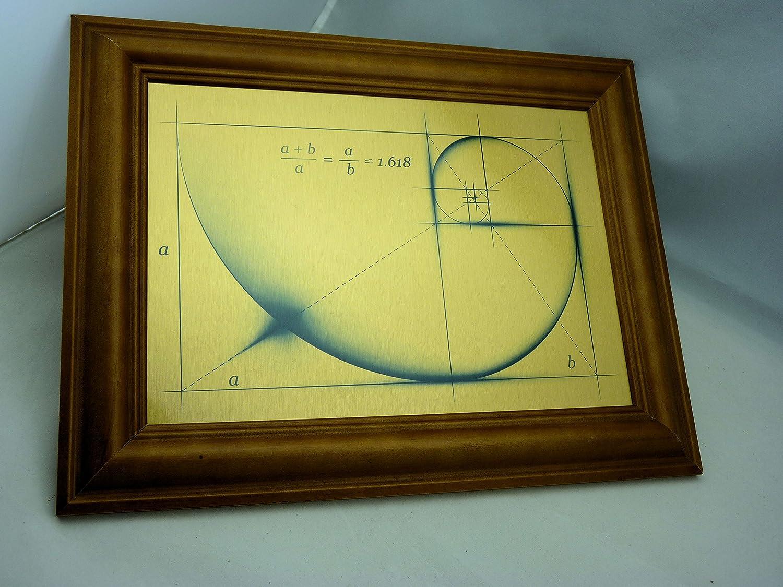 Amazon.com: Fibonacci Golden Ratio Spiral Wall Art on Brushed Silver ...