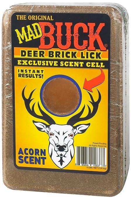 big-tits-mineral-licks-for-deertures