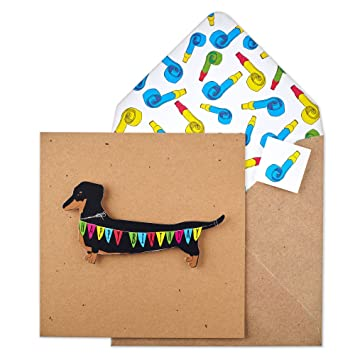 Tache Tc88 Premium Handmade Dachshund Bunting Birthday Card Amazon