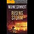 Rising Storm: A Jesse McDermitt Novel (Caribbean Adventure Series Book 11)