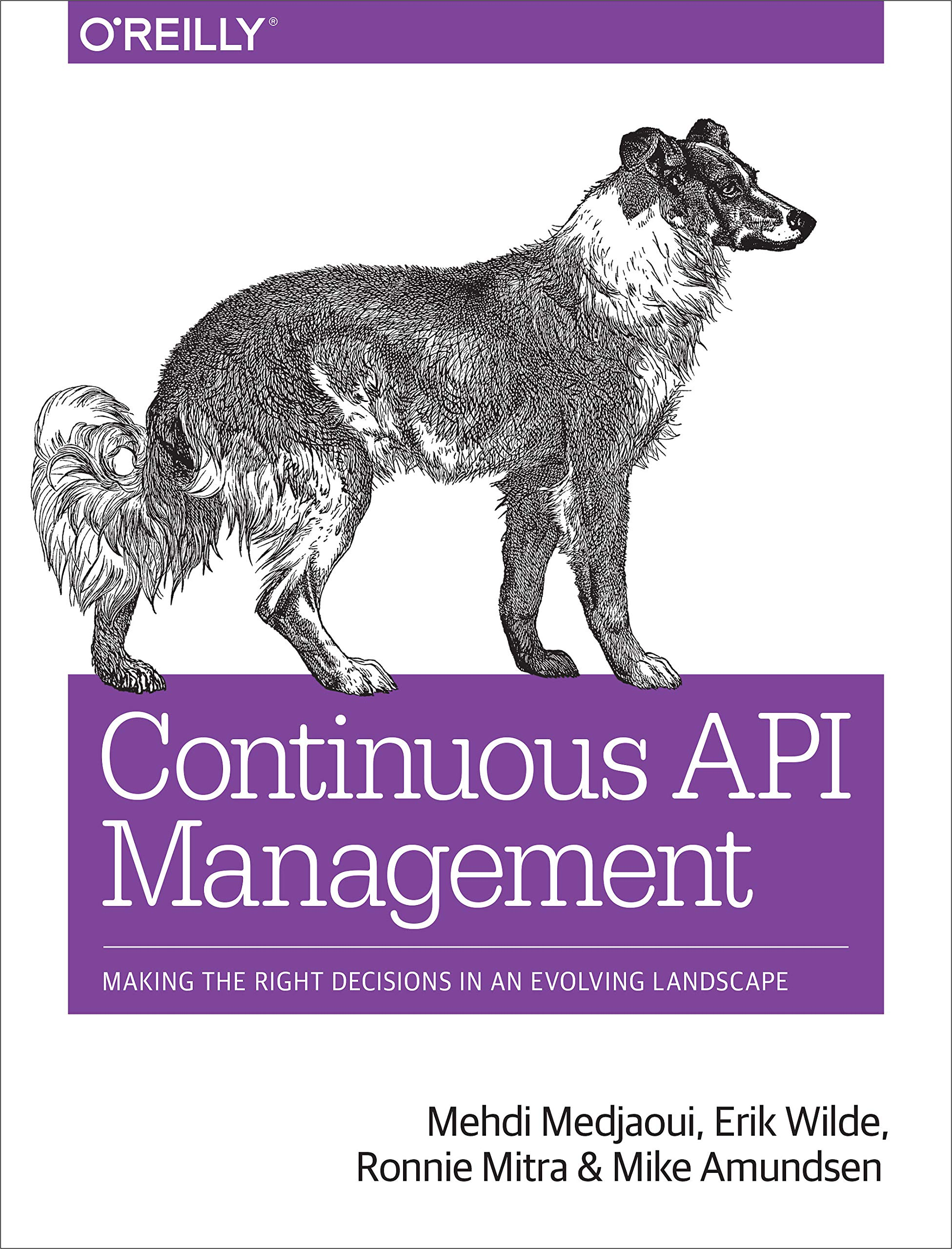 Continuous API Management  Making The Right Decisions In An Evolving Landscape