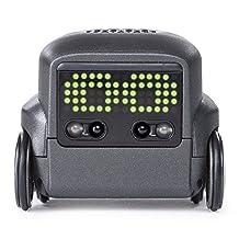 Boxer, de SpinMaster  : un jeune robot déjà primé