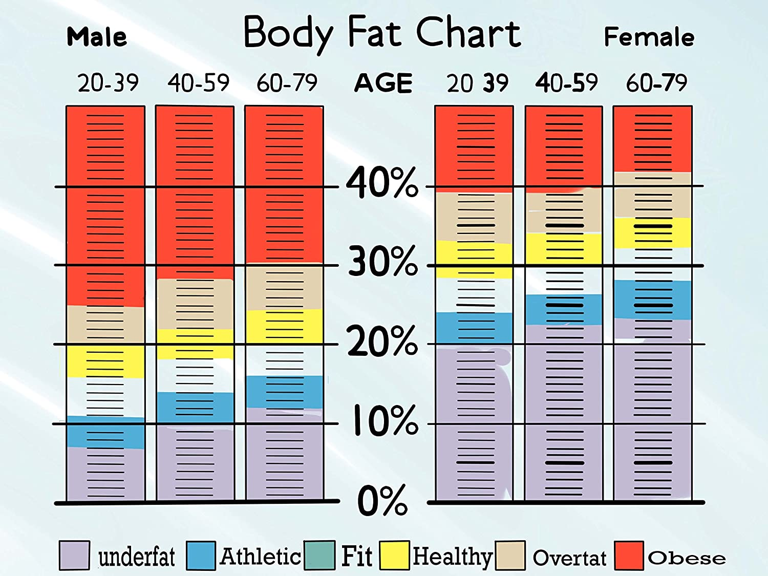 Body Fat Percentage Chart Template | Bodyfat Percentage For Abs Female Coast Guard Weight Standards