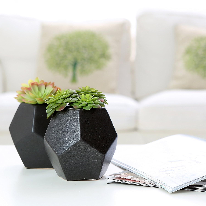 Amazon.com: Set of 2 Realistic Artificial Succulent Plants in Matte ...