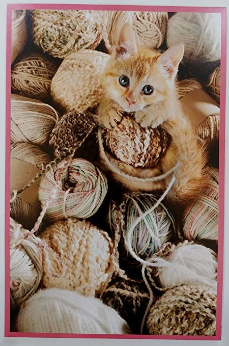 Amazon Kitty Cat Happy Birthday Greeting Card Unisex Its
