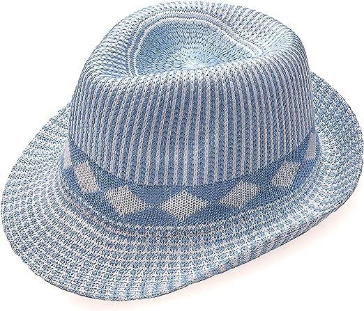 Blue Fedora Hat One Size