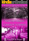 Cowboy Surprise (Rosevale Romance 1)