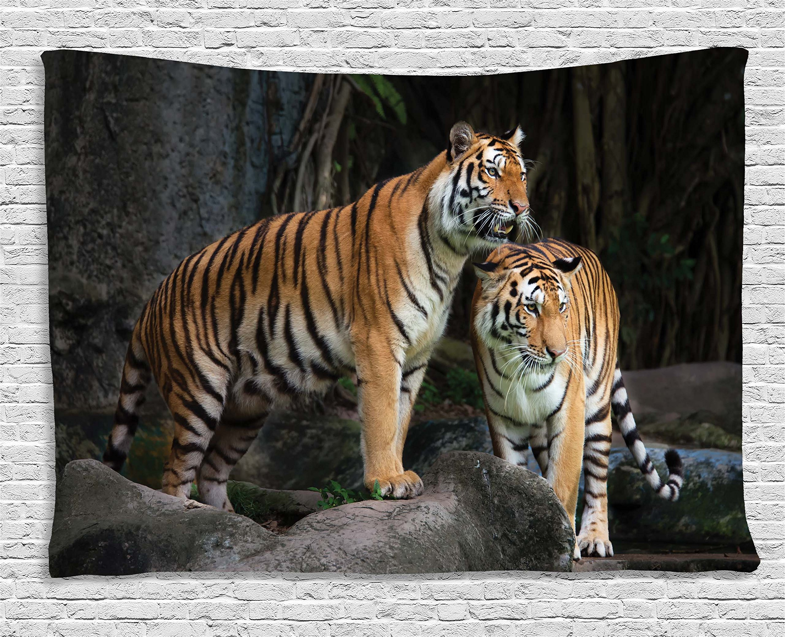 Ambesonne Animal Decor Tapestry, Tiger Couple in The Jungle on Big Rocks Image Wild Cats in Nature Print, Wall Hanging for Bedroom Living Room Dorm, 60 W X 40 L Inches, Grey and Ginger