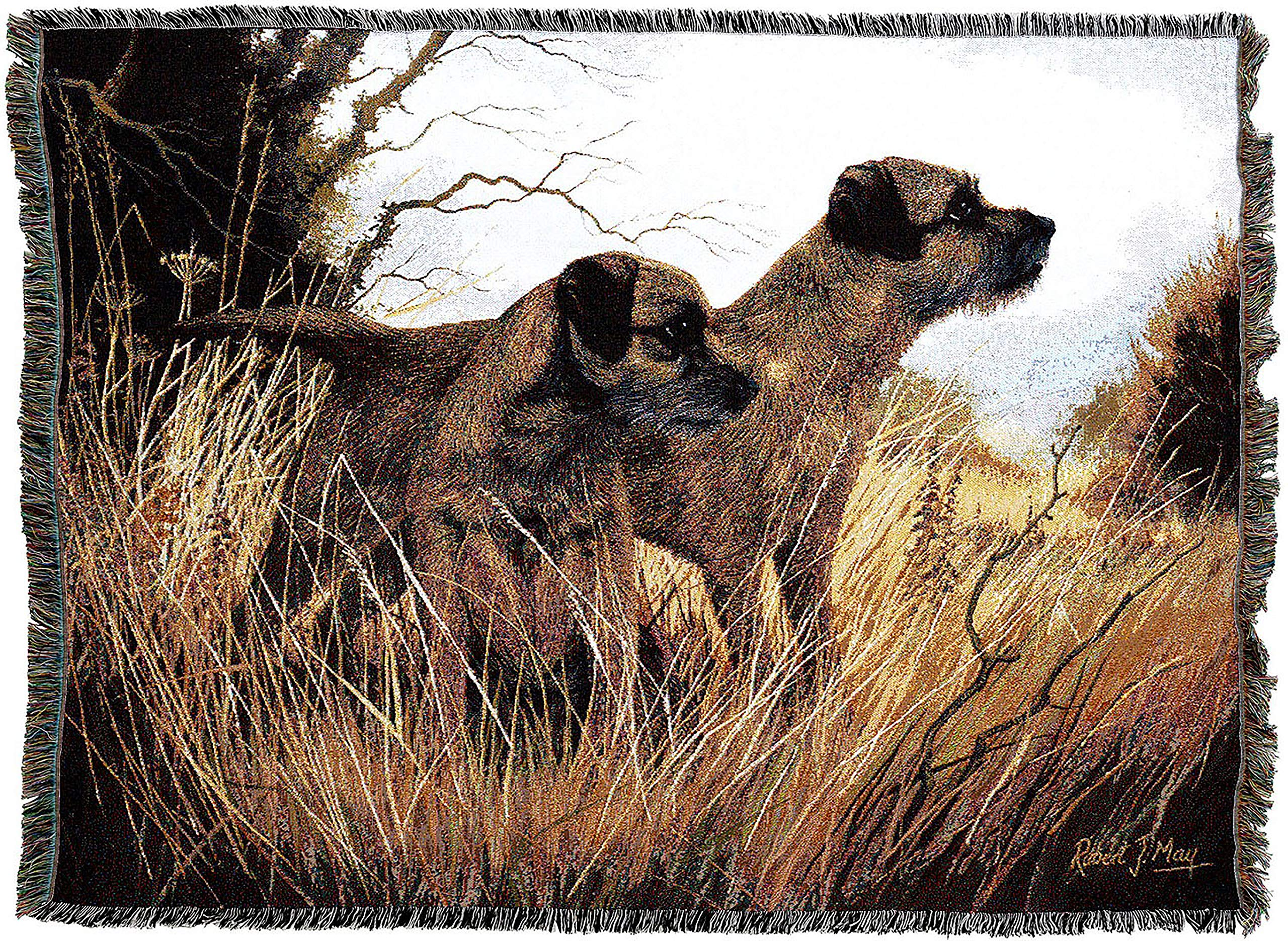 Pure Country Weavers - Border Terrier Woven Tapestry Throw Blanket with Fringe Cotton USA Size 72 x 54