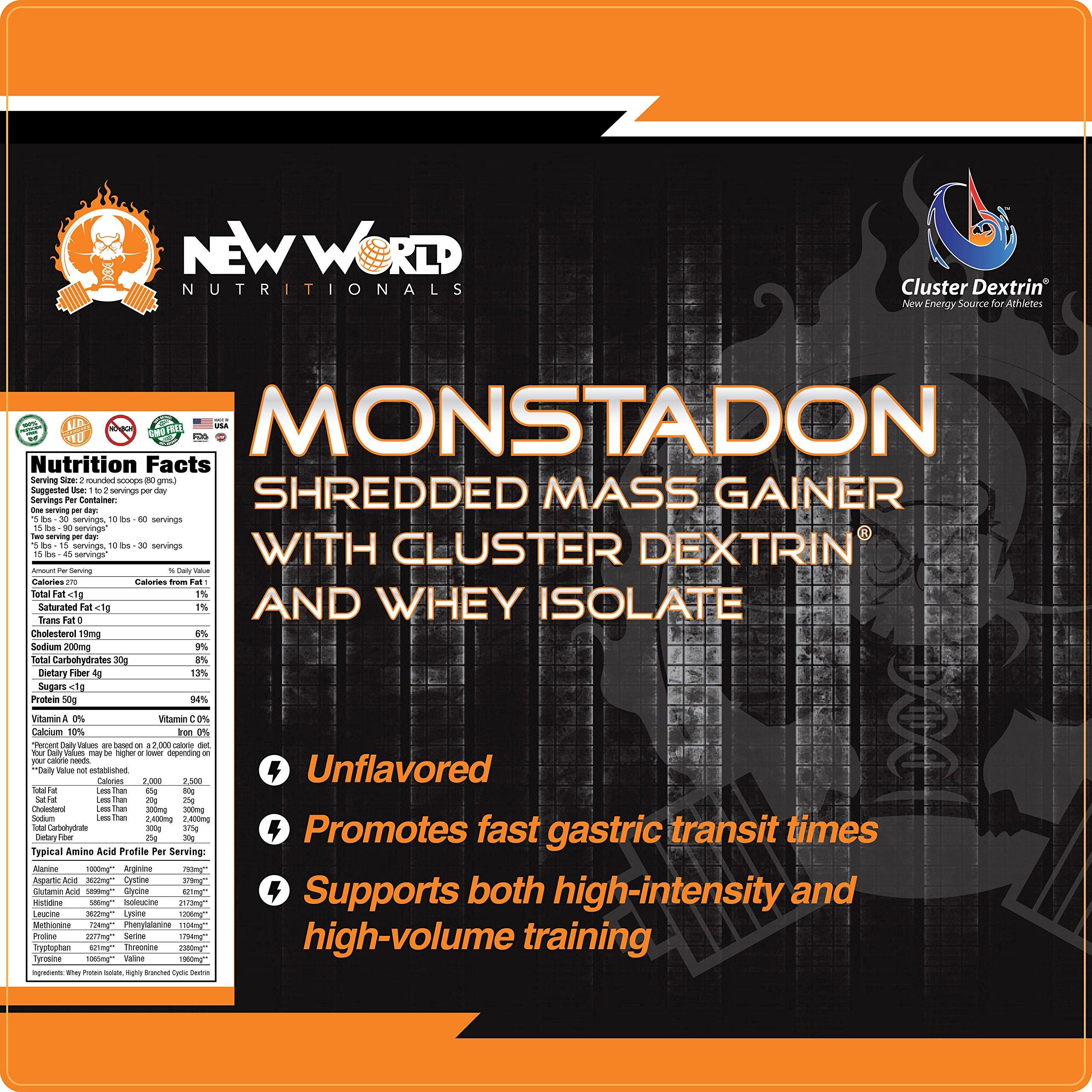 New World Nutritionals 100% Natural Weight Gainer Monstadon-Whey Isolate & Cluster Dextrin®, Non-GMO, No-Additives (Vanilla, 7)