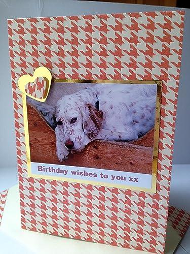 Amazon ENGLISH SETTER GREETINGS Dog Card Birthday Kisses Wishes