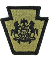 Pennsylvania Army National Guard OCP Patch - Scorpion W2