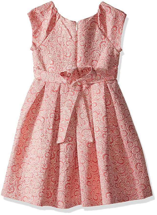 Amazon.com: Bonnie Jean Girls\' Brocade Party Dress: Clothing