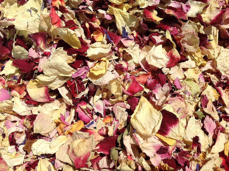 Confeti de pétalos naturales de 1 litro, biodegradable, muchos ...