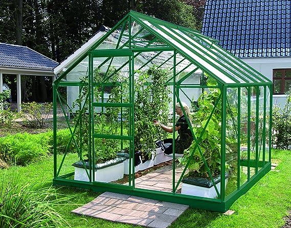 Gartenwelt Riegelsberger Invernadero Merkur – Acabado: 6700 ESG 3 mm Color Verde Oscuro, Superficie: Aprox. 6, 7 m², con 2 Ventanas de Techo, Casquillo: 2, 54 X 2, 54 m: Amazon.es: Jardín