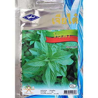 Sweet Basil Seeds From Thailand, Herb and Vegetable (1 Packet, 750 Seeds) : Garden & Outdoor