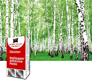 Great Art Photo Wallpaper Birch Forest Decoration 210x140 cm / 82.7x55in – Summer Trees Garden Park Alley Walkway Nature Landscape Green Plants Mural – 5 Pieces Includes Paste