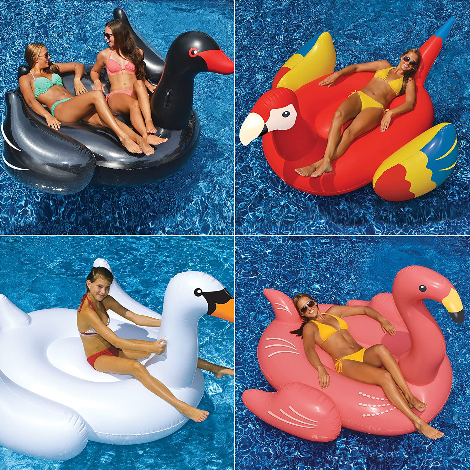 Amazon.com: Swimline Giant White Swan/Flamingo/Black Swan/Parrot Floats For  Swimming Pools (4 Pack): Toys U0026 Games