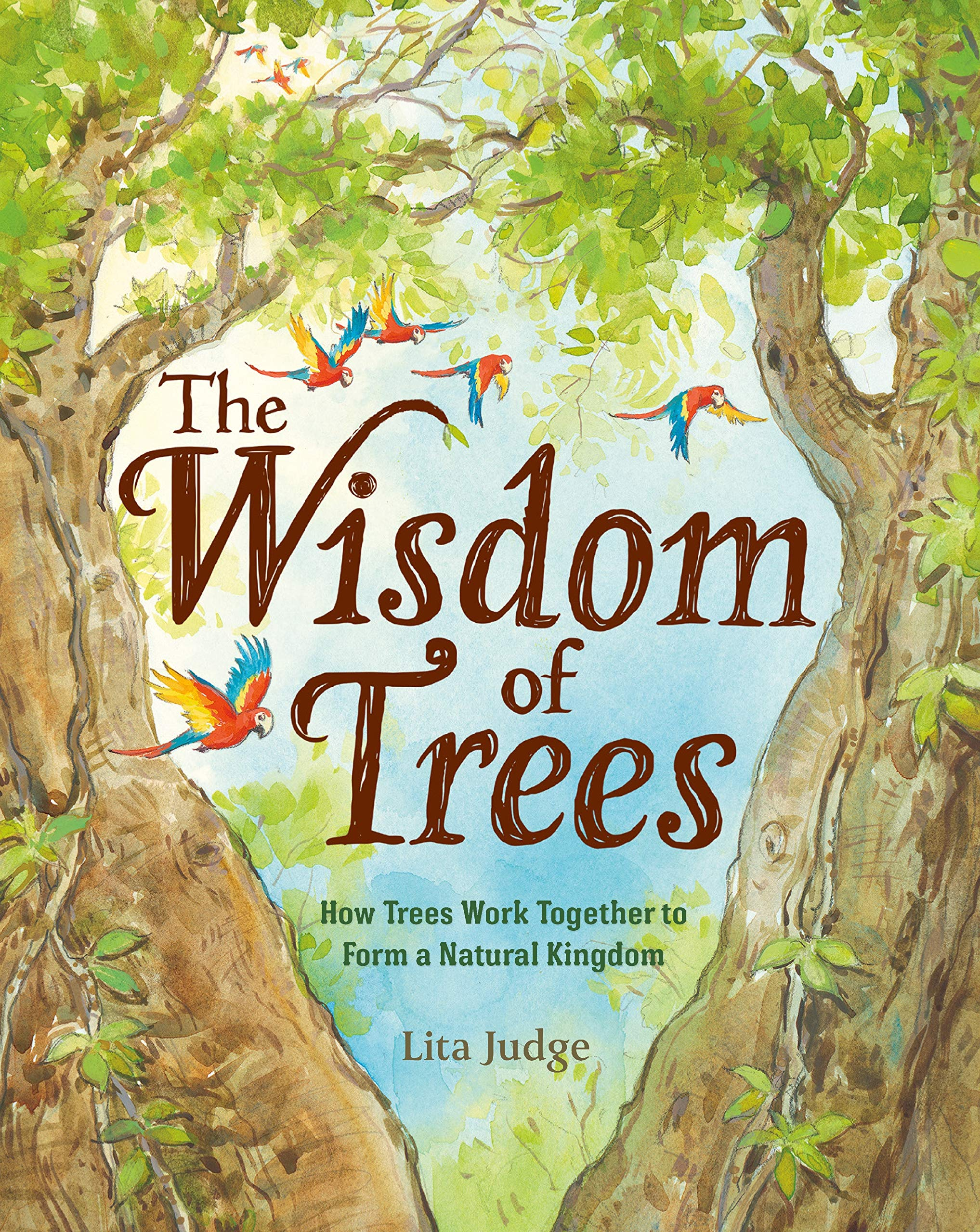 The Wisdom of Trees: How Trees Work Together to Form a Natural Kingdom:  Judge, Lita: 9781250237071: Amazon.com: Books