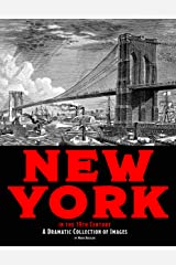 New York in the 19th Century: A Dramatic Collection of Images Kindle Edition
