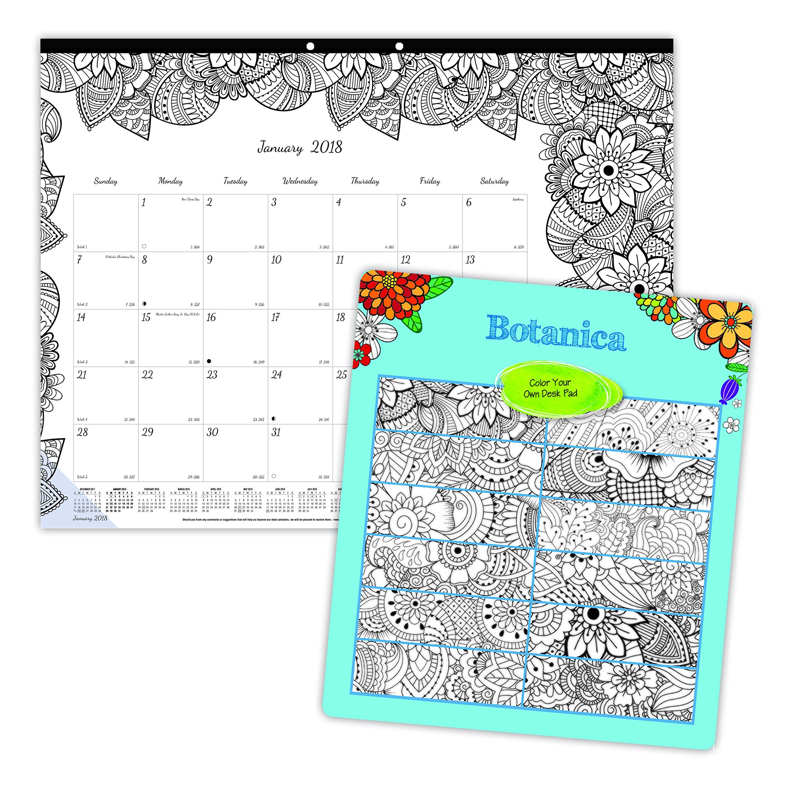 Amazon.com : Blueline 2018 Monthly Coloring Desk Pad Calendar ...