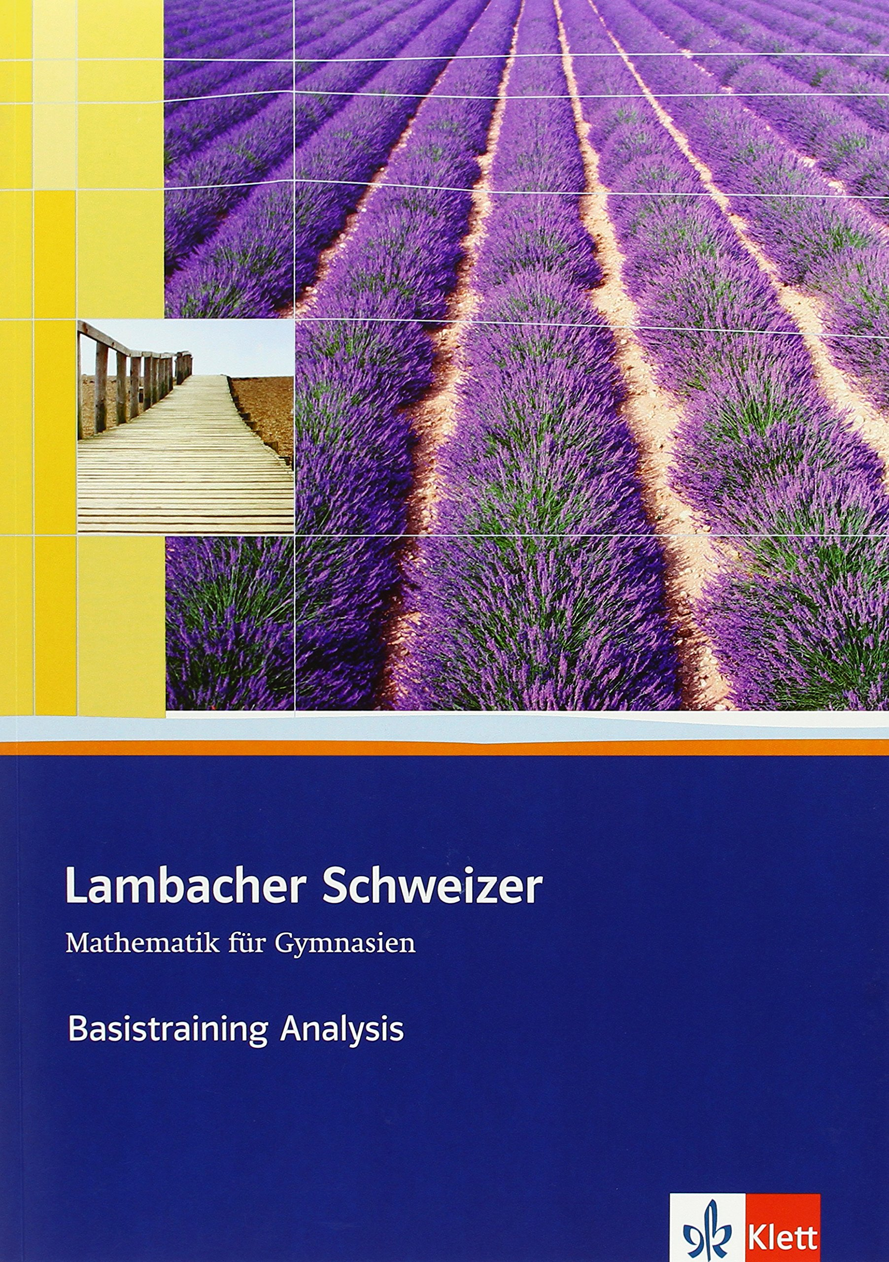 Lambacher Schweizer Mathematik Basistraining Themenband Analysis: Arbeitsheft plus Lösungen Klassen 10-12 oder 11-13 (Lambacher Schweizer. Bundesausgabe ab 2012)