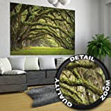 Cherry tree photo wallpaper forest with cherry trees for Decor mural xxl