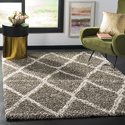 Safavieh Hudson Shag Collection SGH329B Grey and Ivory Area Rug 6 x 9