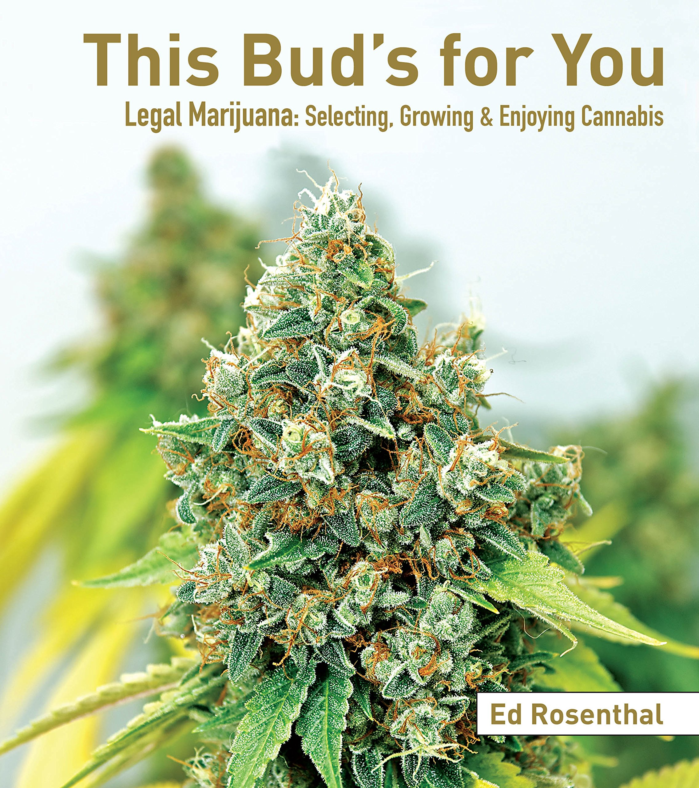 Weed Growing Games Download Windows - Amazon com this bud s for you legal marijuana selecting growing enjoying cannabis 9781936807307 ed rosenthal books