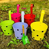 Trajectory Exotic Multicolored Railing Planters with a Gardening Trowel (Set of 5)