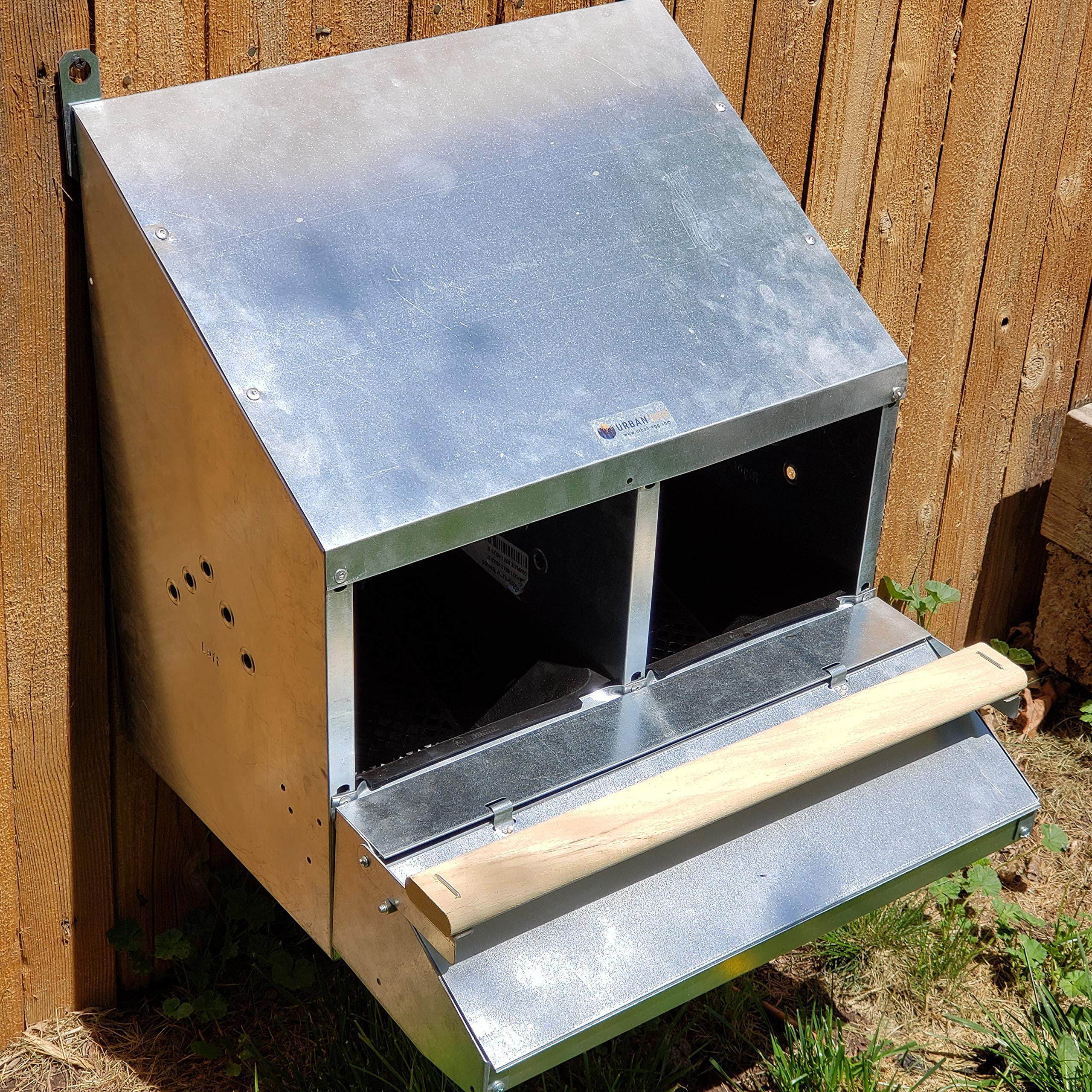 SKA Urban-Egg Roll Away Chicken Nest Box with Foldable Perch & Chute - Zinc-Plated Steel - 2-Hole by SKA