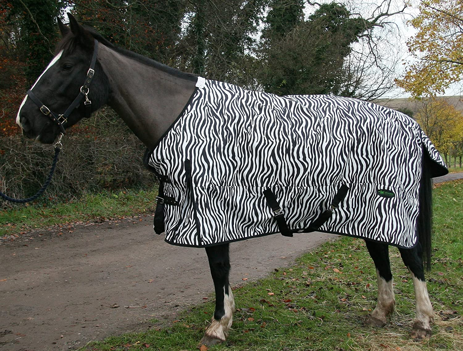 7'3 IV Horse Zebra Print Turnout Rug No Fill 2'9  to 7'3