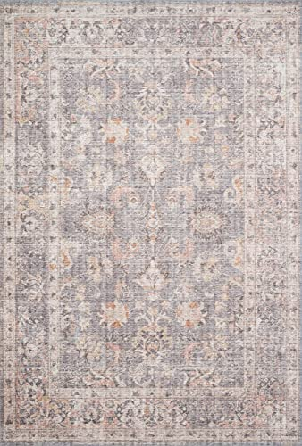 Loloi ll Skye Collection Printed Distressed Vintage Area Rug