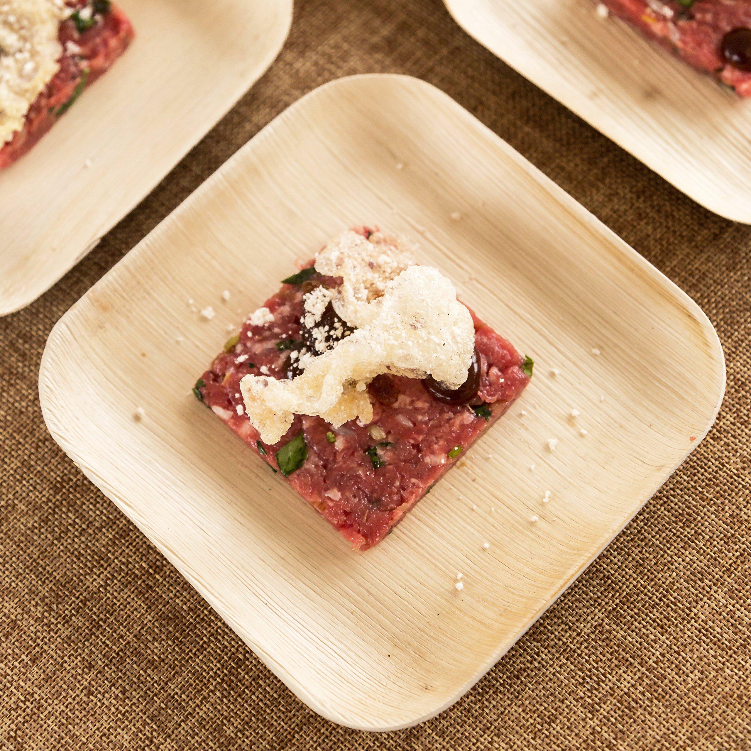 Verterra Compostable Dinnerware- 6'' Square Appetizer and Desert Plate (300-Pack), 300, Natural