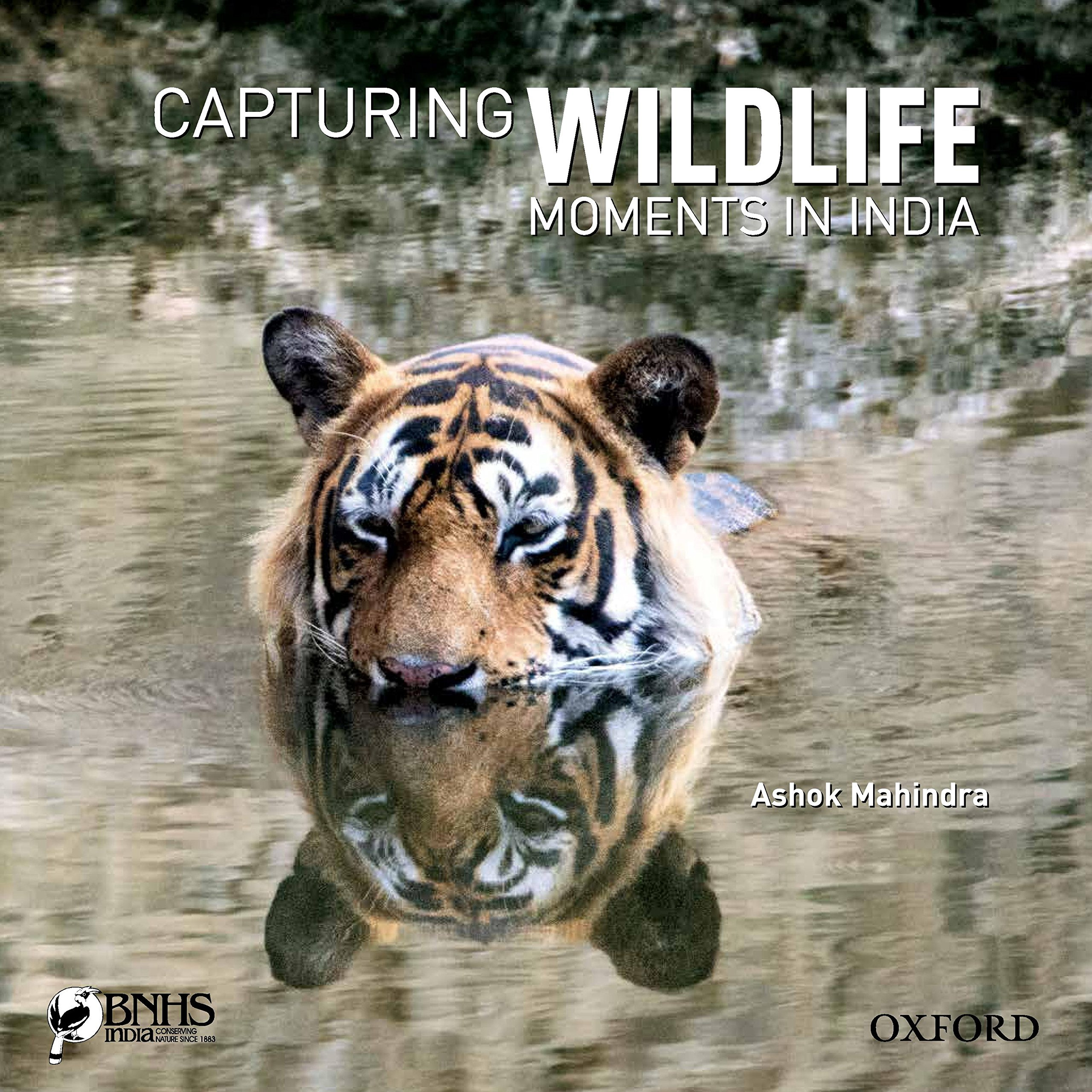 Buy Capturing Wildlife Moments in India Book line at Low Prices