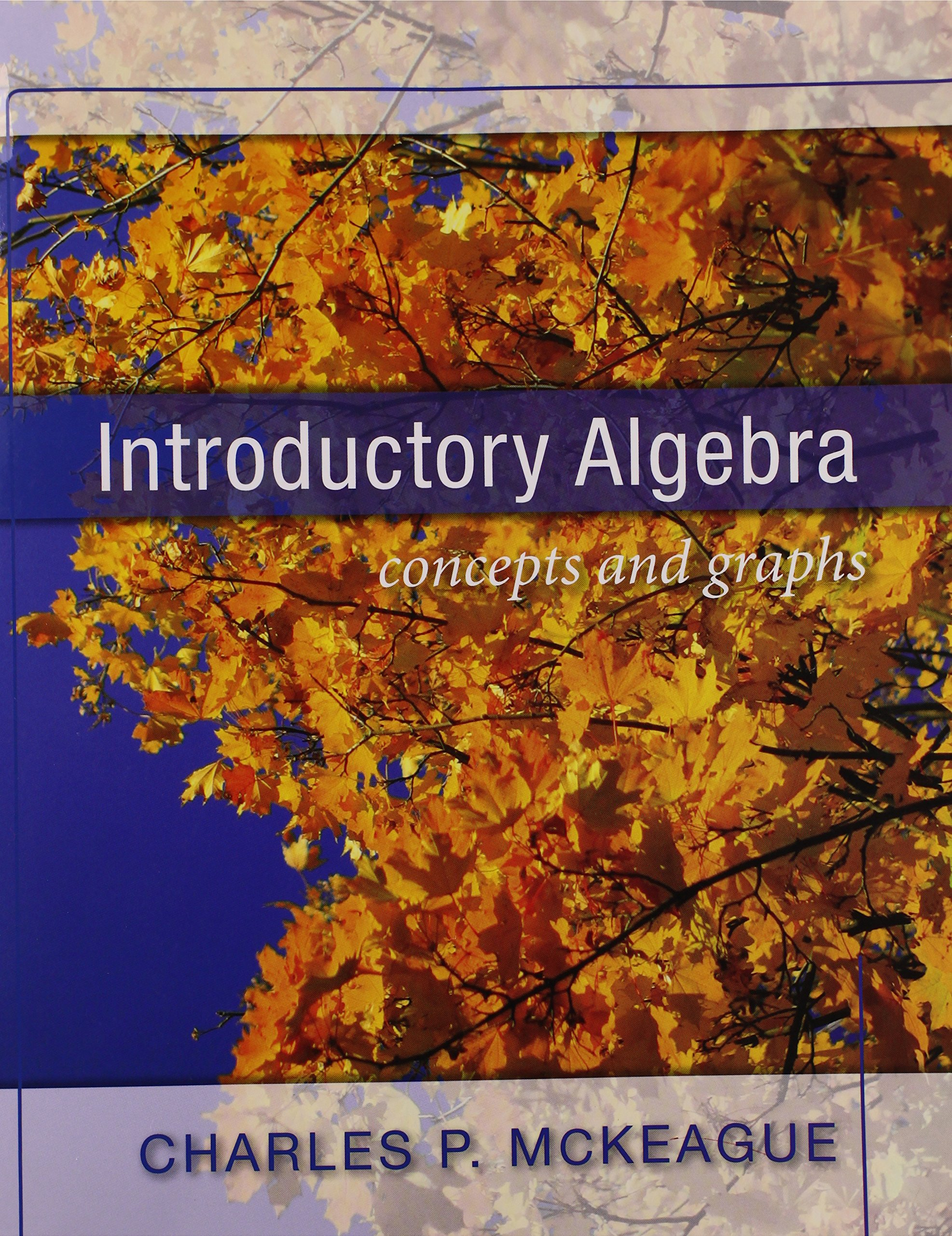 Introductory algebra concepts and graphs charles p mckeague introductory algebra concepts and graphs charles p mckeague 9781936368020 amazon books fandeluxe Images