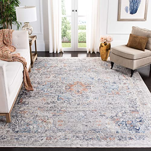 Safavieh Dream Collection DRM419G Grey and Multi 8 x 10 Area Rug